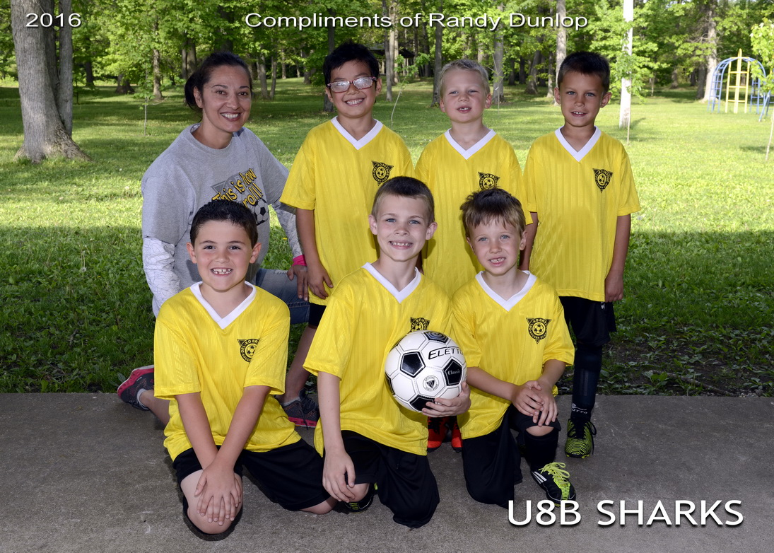 U8B_Sharks_5X7_team_resize.jpg